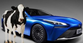 Toyota Mirai will Run on Cow Manure