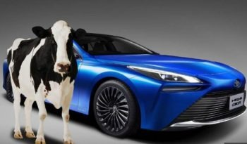 Toyota Mirai will Run on Cow Manure