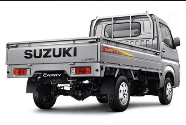 2020 Suzuki Carry Luxury Rear View