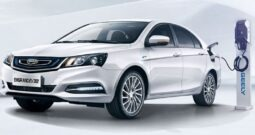 Info Emgrand EV 450 2021 China
